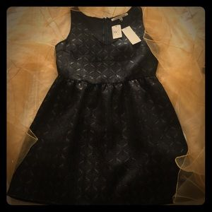 Little Black Dress by Collective Concepts